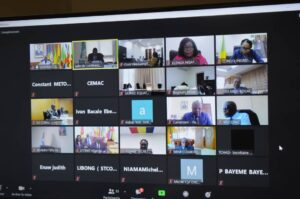 Participants through video conference