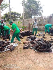 Bushmeat seized by wildlife enforcement officials (Picture by WWF)
