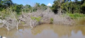 An abandoned sand mine in Ndji Village, where the ecosystem has equally been destroyed by activities of NHPC